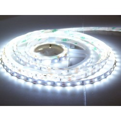 LS 60LED SMD3528 4,8W 300Lm Cold White 12V EPISTAR